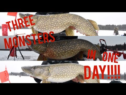 3 Trophy Pike!!! **FIRST ICE**
