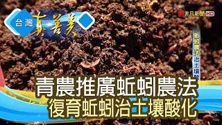 """""""蚯蚓農法""""治土壤酸化【台灣真善美】2019.04.21"""