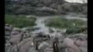 pyar jhoota sahi ASad