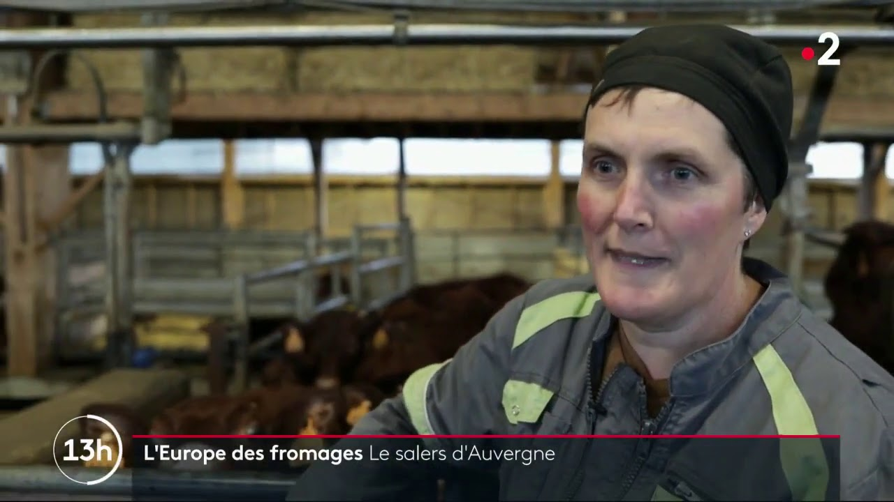 """Download Fabrication du fromage Salers """" Tradition"""""""
