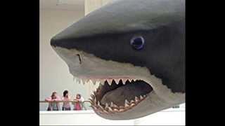Megalodon [worlds biggest shark]