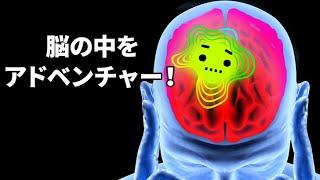 みんなの脳の中をアドベンチャー!