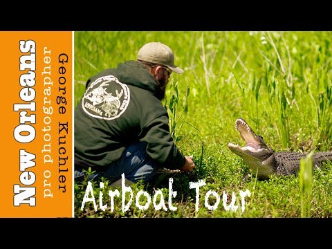 Alligators Eat WHAT??? New Orleans Airboat Tours, LLC