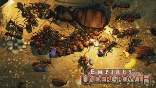 MASSIVE QUEEN ANT INVASION! (Empires of the Undergrowth Gameplay)