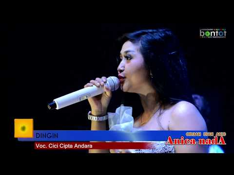 CICI CIPTA ANDARA - DINGIN - ANICA NADA DIAN ANIC - THE BONTOT RECORDS :: BONTOT PRODUCTION