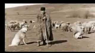 ancienne musique de danse de transe