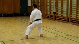 Kokutsu Dachi  e Neko Asdhi Dachi :Masao Kagawa Sensei