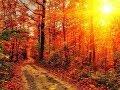 Осень золотая mp3