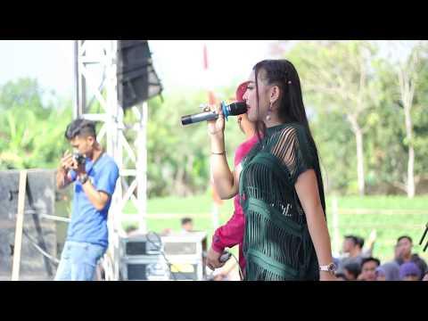 Konco Turu Anis Jp New King Star ARK Community