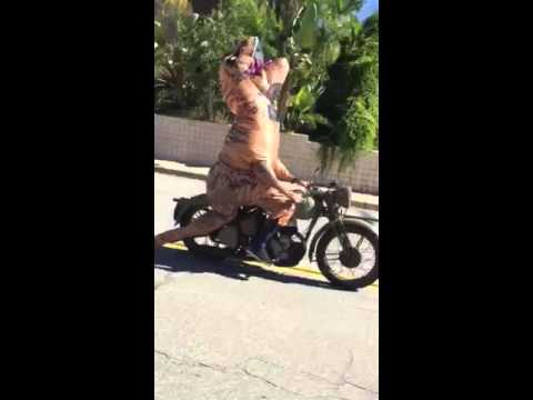 Ralph the Rex Riding a Motorcycle