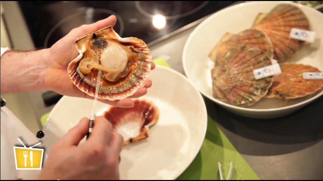 frische jakobsmuscheln vorbereiten - französische küche mit pierre