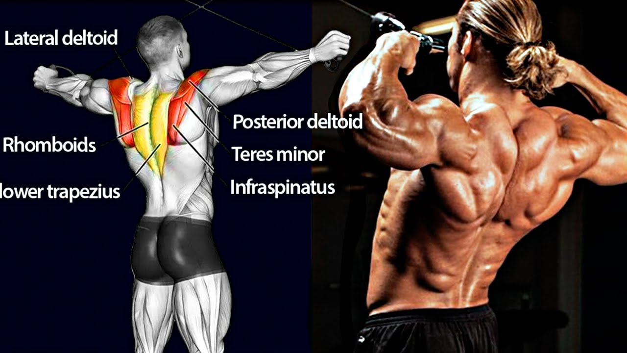 How To Build A Bulletproof BACK - Do These Exercises!