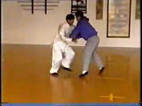 Taikiken Seminar - Tui Shou (Pushing Hands) Master Cui Rui Bin
