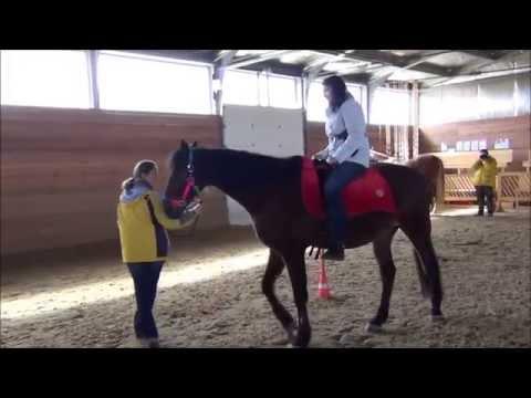 Бизнес тренинг с лошадьми ИСКУССТВО ЛИДЕРСТВА