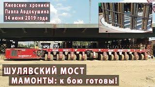 МАМОНТЫ: к бою готовы! ШУЛЯВСКИЙ МОСТ - 14.06.2019
