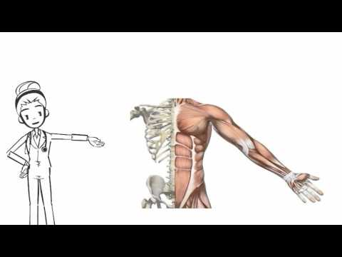 hqdefault - Back Pain Physical Therapy Chiropractic