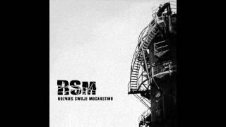 RSM - Jestem Dilerem (Cold Therapy Remix)