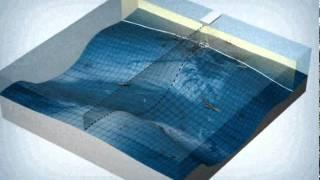Side Imaging® Tutorial Video
