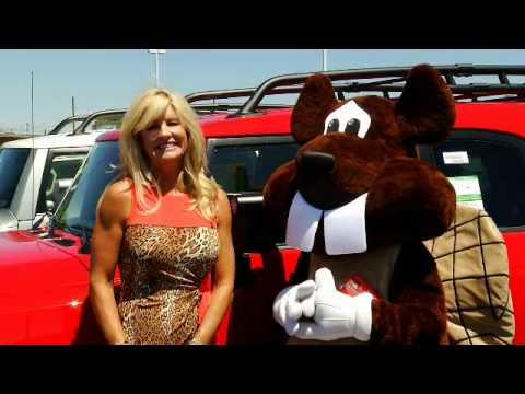Attractive Beaver Bloopers Serving Los Alamos, Espanola, Rio Rancho, Santa Fe And The  Rest Of New Mexico. Beaver Toyota