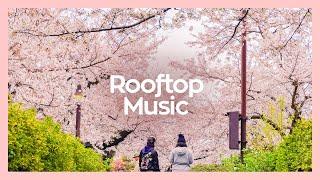 Download ◎ Playlist 🌸미리 듣는 두근두근 봄 캐롤 BEST🌸