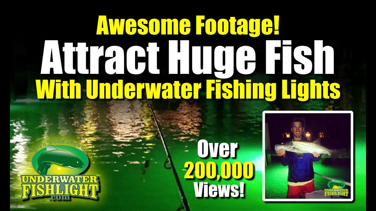 underwater fishing lights - attract monster fish! green dock, Reel Combo