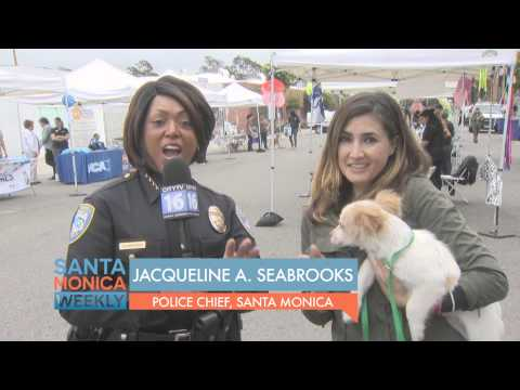 Santa Monica Animal Shelter Reopen