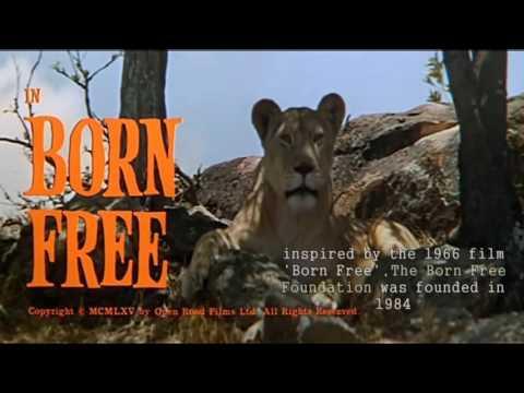Born Free Foundation Promo 2016