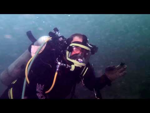 23 12 2016 Full Face Mask & Comm's Dive 1 at Otakou Wharf Wi