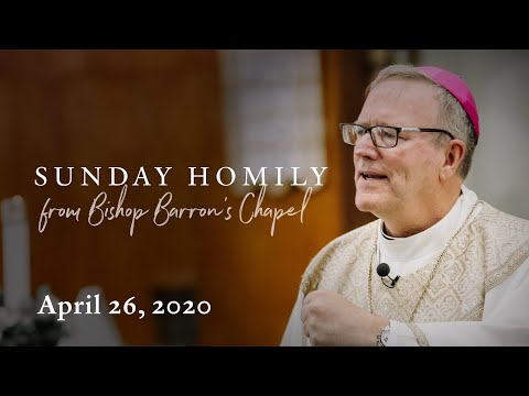 Eyes Open to Recognition and Mission (Sunday Homily from April 26, 2020)