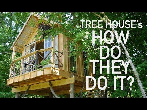 Tree House Building- Garnier Limb/Attachment techniques in a NY build....