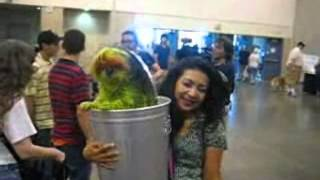 "Shih Tzu Dyed And ""dressed"" Like Oscar The Grouch At The Houston Pet Expo 2012"