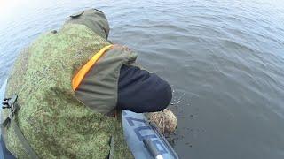 Закрытие сезона Последняя рыбалка с лодки Поиск судака на водохранилище