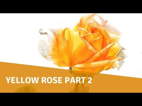 Watercolor Tutorial - Yellow Rose Part 2