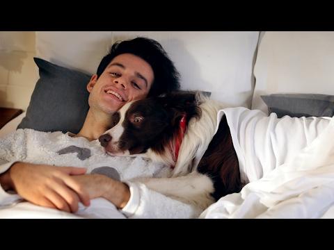 Orkun Işıtmak - Köpek Değilim (Official Music Video)