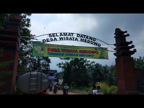 wisata-dhahar-durian-di-medowo-kandangan-kediri-2019-my-trip-my-adventure-destinasi,di-rumah-saja
