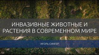 Игорь Сингер. Инвазивные животные и растения в современном мире.