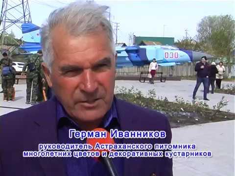 Астраханский Питомник. Озеленение сквера Ветеранов на ул. Боевая.