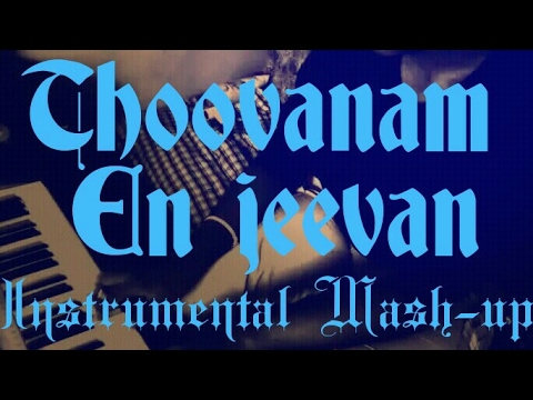 Thoovanam | En jeevan (Mash up) - Instrumental Cover
