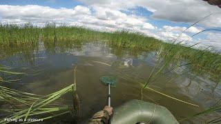 Ловля карася на озере Очередная рыбалка с лодки в камышах