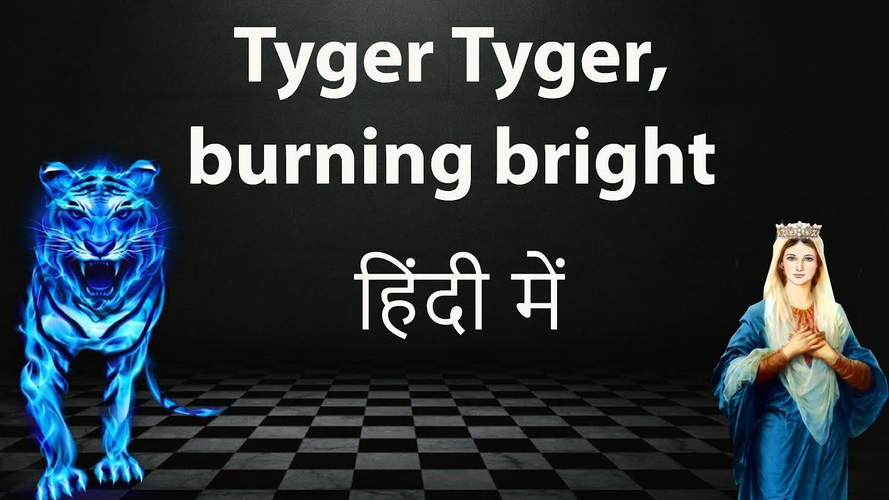 tiger tiger burning bright meaning