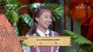 [正大综艺·动物来啦]选择题 巫山巴鲵是中国特有的物种| CCTV - YouTube