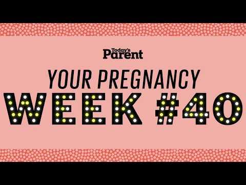 Your pregnancy: 40 weeks