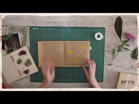 DIY: herbario por Sara Rodas By PCFK