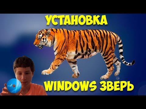 Установка Windows XP ZverDVD
