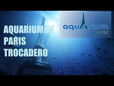 AQUARIUM PARIS TROCADERO - the most beautiful aquariums in the world