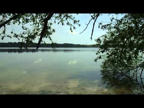 рыбалка в лунинецком районе