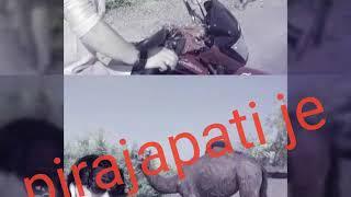 Dil Ki Dhadkan Ki Tarah Thi Jo Mere Dil Mein Basi