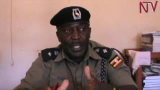 Poliisi e Kaliro ekutte bataano ababbye obutimba bw'ensiri thumbnail