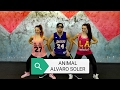 Alvaro Soler Animal Radio Edit
