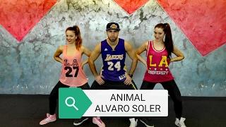 ANIMAL | Alvaro Soler | coreografìa zumba Dance Fitness 2017